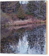 Leaves On Water Wood Print