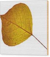 Leaves Ten  Wood Print