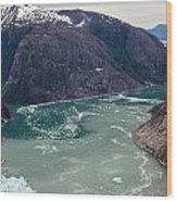 Leconte Glacier Wood Print by Mike Reid