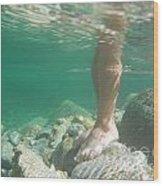 Legs Underwater Wood Print