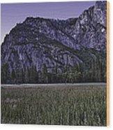Leidig Meadow Wood Print