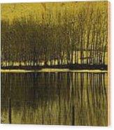Lemon Lake Wood Print