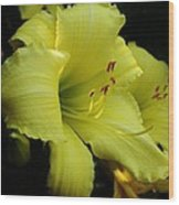 Lemon Supreme Wood Print