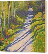 Lena Lake Trail 3 Wood Print