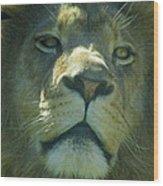 Leo,lion Wood Print