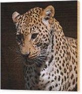Leopard I Wood Print