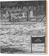 Leper Graveyard On Robben Island Wood Print