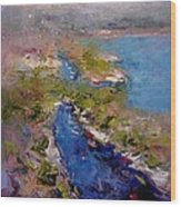 Les Calanques In Morning Wood Print