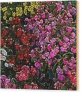les fleurs II Wood Print
