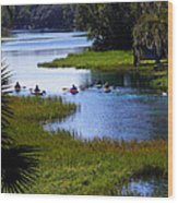 Let's Kayak Wood Print by Judy Wanamaker