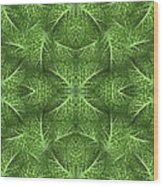 Lettuce Live Green  Wood Print