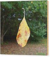Levitation Wood Print