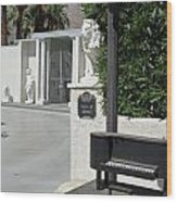 Liberace's Driveway Wood Print