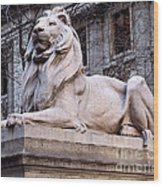Library Lion-new York City Wood Print