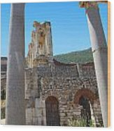 Library Of Celsus And Columns Wood Print
