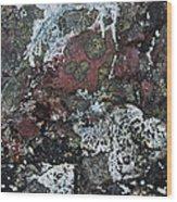 Lichen Abstract II Wood Print
