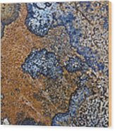 Lichen Pattern Series - 35 Wood Print