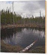 Liesijoki Wood Print