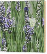 Life In The Garden Wood Print