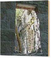 Life Through The Ruins Wood Print