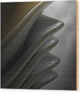 Light And Shadows Wood Print