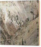 Light And Shadows In The Grand Canyon In Yellowstone Wood Print