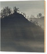 Light In Mountain Fog Wood Print
