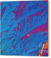 Light Micrograph Of Didanosine Ddi Wood Print