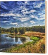 Light Peeks Through At Broemmelsiek Park Wood Print