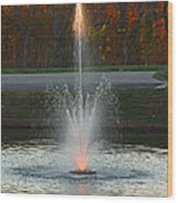 Lighted Fountain Wood Print