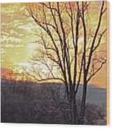 Lighten Up The Sty Wood Print