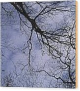 Lightening Branches Wood Print