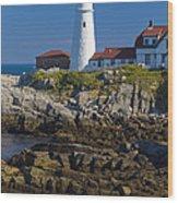 Lighthouse And Rocks Wood Print
