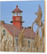 Lighthouse In Wheat Field Wood Print