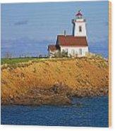 Lighthouse On Prince Edward Island Wood Print