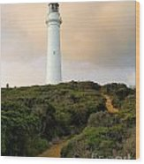 Lighthouse Path Wood Print