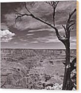 Lightning Striking Tree Of The Grand Canyon Wood Print