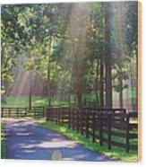 Lightray Farm Wood Print