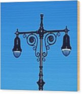 Lights Of Coney Island Wood Print