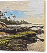 Lihue Rocky Coast Wood Print