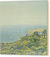 L'ile Du Levant Vu Du Cap Benat Wood Print