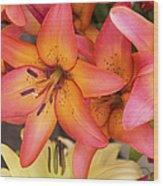 Lilies Background Wood Print
