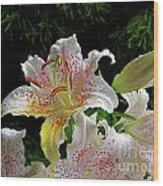 Lilies In The Rain Wood Print