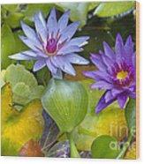 Lilies No. 2 Wood Print by Anne Klar