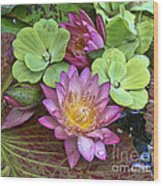 Lilies No. 21 Wood Print by Anne Klar