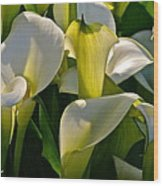 Lilies Of The Nile Wood Print