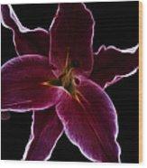 Lilium Stargazer Wood Print