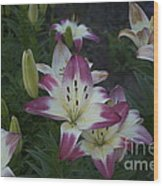 Lillies Wood Print