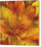 Lily Abstract Wood Print