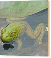 Lily Frog Wood Print